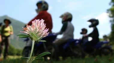 fleur moto trial