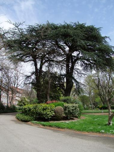 jardin royal 1 TOULOUSE