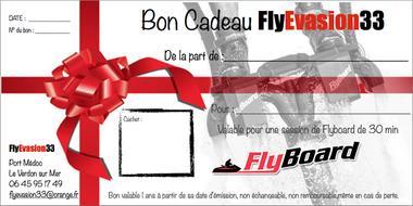 FlyEvasion33