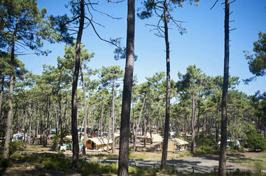 Camping Huttopia Lac de Carcans
