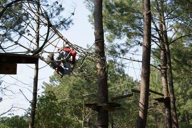 La Forêt des Accromaniaques