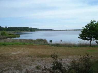La clairière, point de vue idéal sur l'étang et ses marais