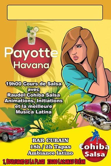 Payotte Havana