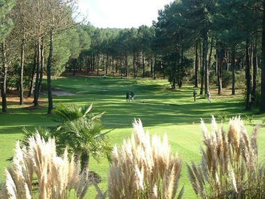 ucpa golf école du Baganais