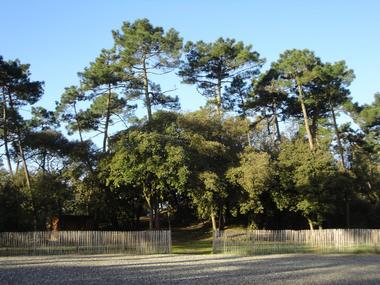 activiteloisirs-parcdesfloralies-latranchesurmer-85