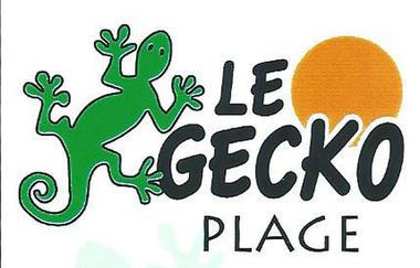 gecko-plage