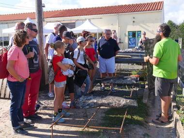 visite-huitres-talmont