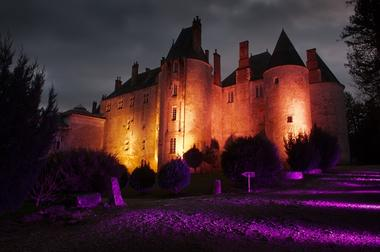 Photo Château de Meung Noël