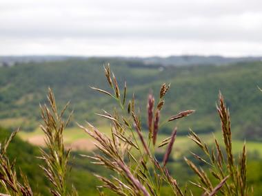 07Lieu dit Boissoles - Paysages bourians  © Lot Tourisme - C. Sanchez