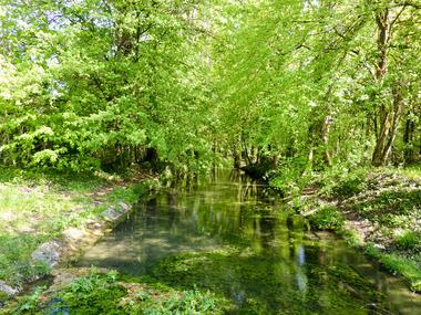 14Auricoste - ruisseau affluent de la Masse © Lot Tourisme - C. Sanchez
