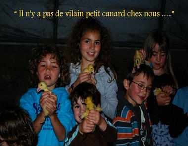 190215FermeDesCazalous_Puyjourdes1