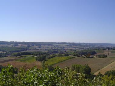 Saux - Vue sur le Vignoble de Cahors
