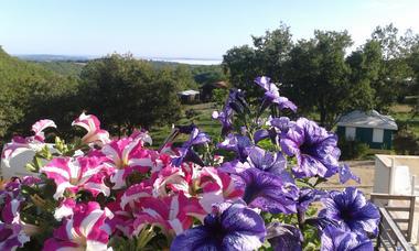 vue camping fleurs 2