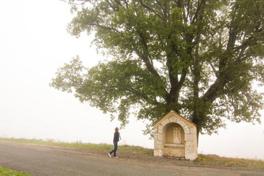 Cambayrac - Abris et Grand Chêne