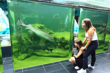 Aquarium du Périgord Noir 3