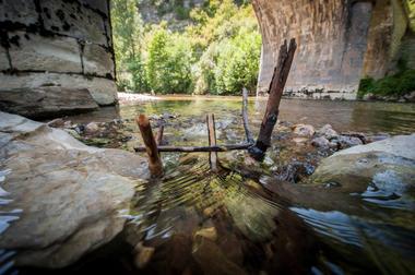 Baignade dans le Célé à Espagnac_04 © Lot Tourisme - C. ORY
