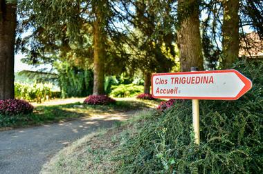Bienvenue au Clos Triguedina_10 © Lot Tourisme - C. ORY