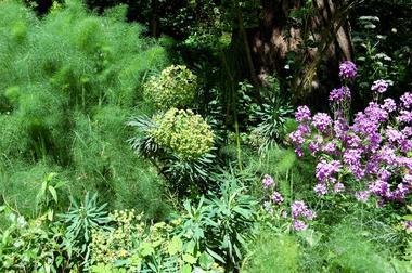 ChHotesDuJardinDeLaRaze-jardin2_Collonges