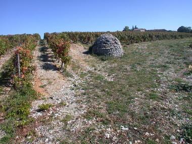 Trespoux Rassiels : Abri en Pierres Sèches sur le Vignoble