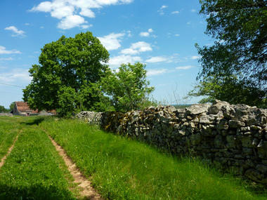 Couybes - Chemin herbeux sur le causse _07 © Lot Tourisme - C. Sanchez