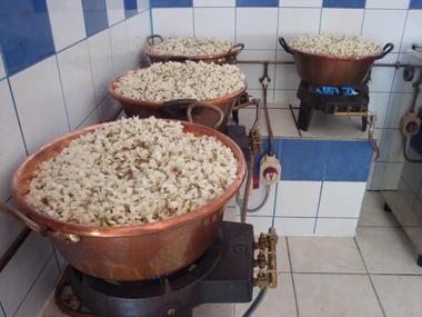 Le Rucher de Pech Larive à Bouziès
