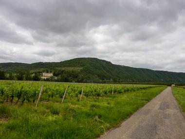 Dauliac - Entre vignes et chateaux_11 © Lot Tourisme - C. Sanchez