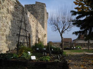 Jardins médiévales - Capdenac-Le-Haut