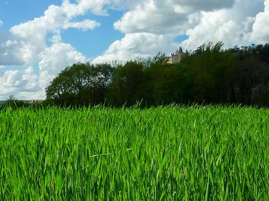 Les Couailloux - Chateau de Mercues reignant sur le bosquet © Lot Tourisme - C. Sanchez