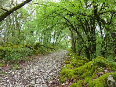 Mas de Coulié - Chemin de pierres © Lot Tourisme - C. Sanchez