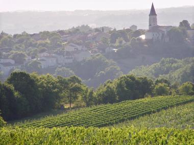 Paysage domaine de Belfort