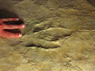 Plage Ptérosaures Crayssac