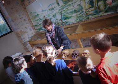 Visite-guidee-enfant_Crane_Musee-de-l-Homme-de-Neandertal-la-Chapelle-aux-Saints