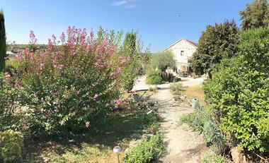 chemin-de-rocaille-jardin-paysage