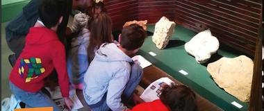 visite enfant dino et les fossiles