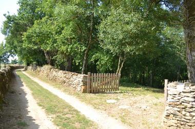 L'entrée du bois