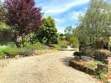 jardin-paysage-cote-granges-olivier