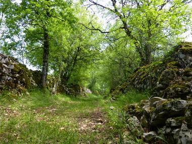 le Peyrefit - chemin herbeux entre murets de pierres _03 © Lot Tourisme - C. Sanchez