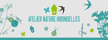 Atelier Nature Hirondelles