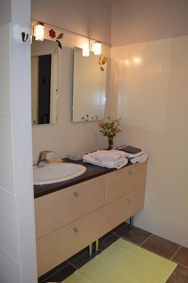 salle de bains (bis)