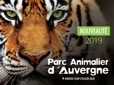 Parc-Animalier-d-Auvergne--2-
