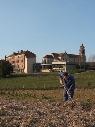 Abbaye de Maylis - Champs de tisanes
