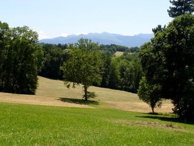 Arboretum de Payssas - Vue 2 (Bourdet Joseph)