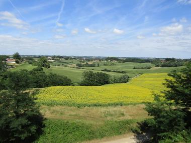 Point de vue belvédère - Bastide de Montfort-en-Chalosse