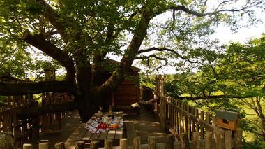 Cabane Papyjotte - petit déjeuner sur terrasse privée
