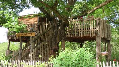 Cabane Papyjotte dans les arbres