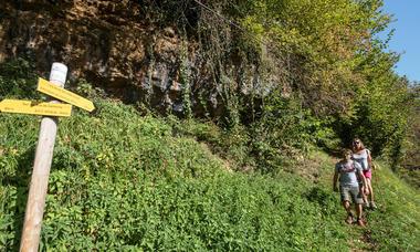 Chemin des buis de Camploung