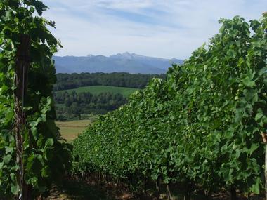 Domaine Naba - Vignes II (Mathieu Lacanette-Naba)