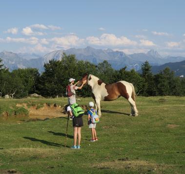 Famille Ossau et cheval TS
