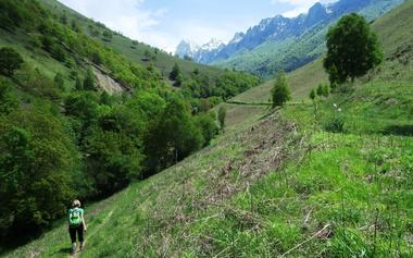 Le permayou et la Montagne de Liard