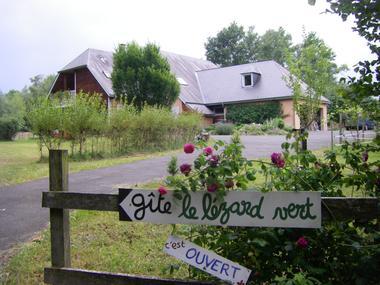 Lézard vert II (Magali Portet)